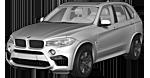 Oryginalne części samochodowe do BMW Seria X5 F85 SAV